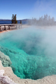 Yellowstone - Black Pool, West Thumb Geyser Basin, Yellowstone National Park, Wyoming
