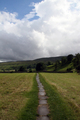 UK - Footpath from Muker to Keld leading through hay meadow, Upper Swaledale